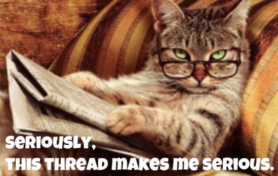 cat-reading-newspaper-445x299s