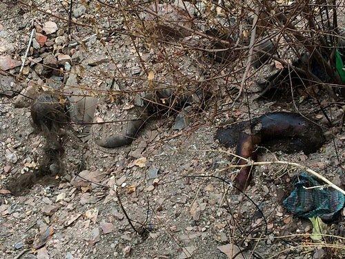mass grave ukraine