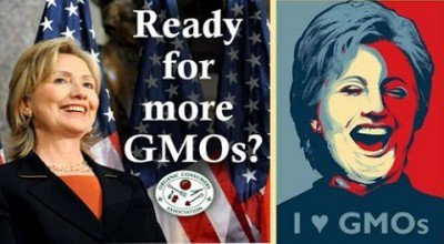 hillary-clinton-GMO-monsanto-480x264-400x220